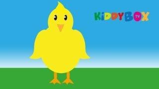 Ein Vogel wollte Hochzeit machen - Kinderlieder (KIDDYBOX.TV)