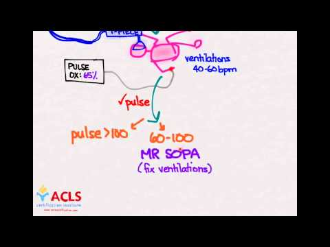 NRP Overview and Review  by ACLS Certification Institute
