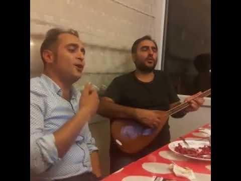 Mehmet Hatemi Türkü