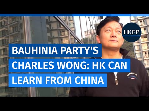 Hong Kong can learn from China's system, says pro-Beijing Bauhinia Party co-founder Charles Wong