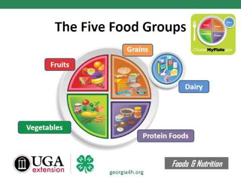 Georgia 4-H Nutrition for 4-H Foods Projects