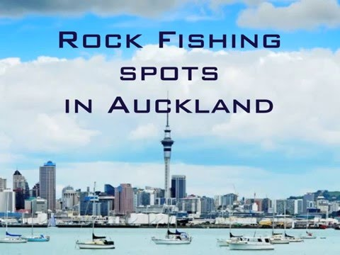 The best land-based fishing spots in Auckland, New Zealand