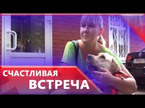 Видео, Следователи передали найденную собаку поводыря слепой певице