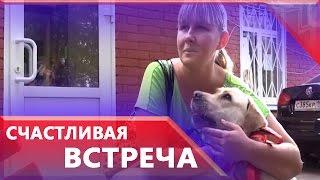 Следователи передали найденную собаку поводыря слепой певице