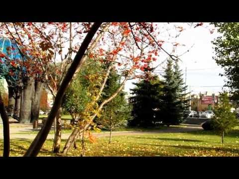 Осень, что же ты так рано ...