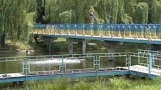 Чи безпечні водойми у Коломиї?
