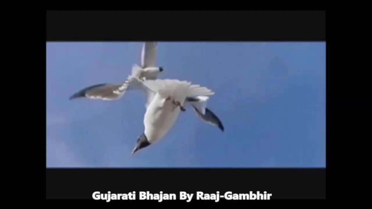 Ek Pankhi Avine Udi Gayu Gujarati Bhajan By Raaj Gambhir Youtube