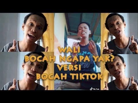 Wali - Bocah Ngapa Yak Versi Bocah Tiktok  ( Cover )by Fauzan Abdi