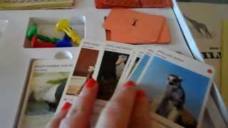 RARE WWF WILD LIFE VINTAGE BOARD GAME ENGLISH MADE