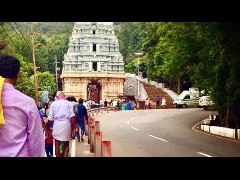 ALIPIRI TO TIRUMALA BY FOOT  - Tirupati Vlog- 2
