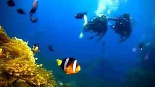 Andy & Nina go Scuba Diving in Bali