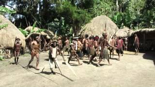 видео Дайвинг в Индонезии: Раджа Ампат в Западной Папуа.