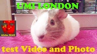 UMI LONDON - пример записи ВИДЕО, ФОТО (Example video recording photo)