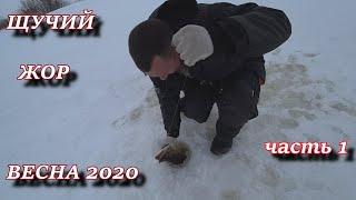 ДИЧАЙШИЙ ЖОР ВЕСЕННЕЙ ЩУКИ!!! 3 мая на льду!!! часть 1