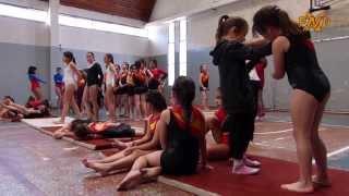 gimnasia artstica en el bolsn fanaticos xnd