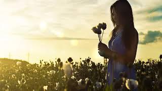 Красивая Музыка для Души в стиле Ambient Aerocity - Love Lost (Потерянная любовь) 4К UHD
