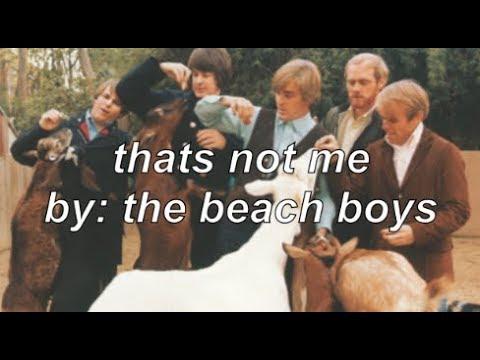 that's not me by the beach boys (lyrics)