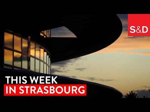 This Week in Strasbourg | Whistleblowers, Workers' Rights, Glyphosate, EU Budget and More...