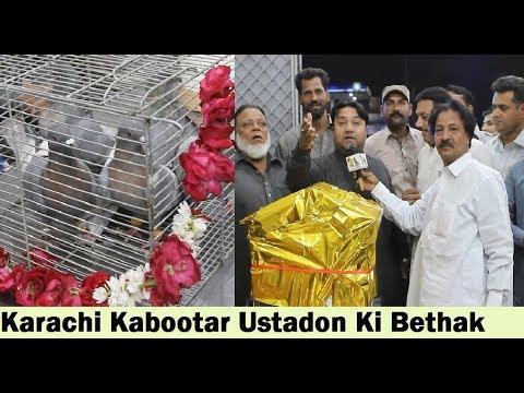 Karachi Pigeons Ustadon Ki Bethak - Pigeon Association Karachi