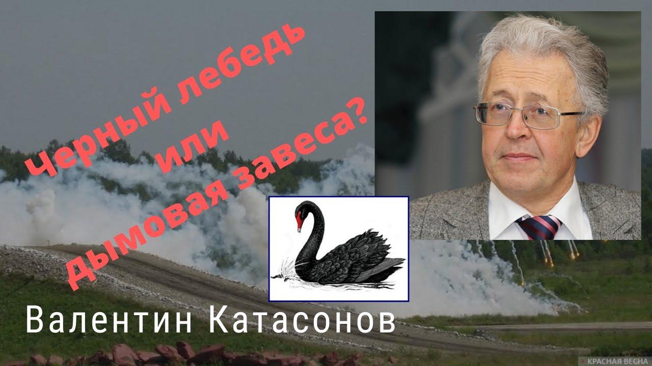 Валентин Катасонов  - Черный лебедь или дымовая завеса?