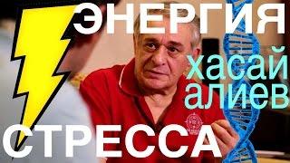 Хасай Алиев - интерьвью,  ВЛОГ у него дома. ЭНЕРГИЯ СТРЕССА