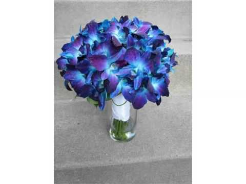 blue orchid and rose bouquet beautiful orchid flower image ideas