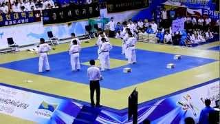 Team-M Taekwondo: 2012 World Taekwondo Hanmadang (3rd place)