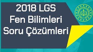 2018 LGS / Fen Bilimleri / Soru Çözümleri