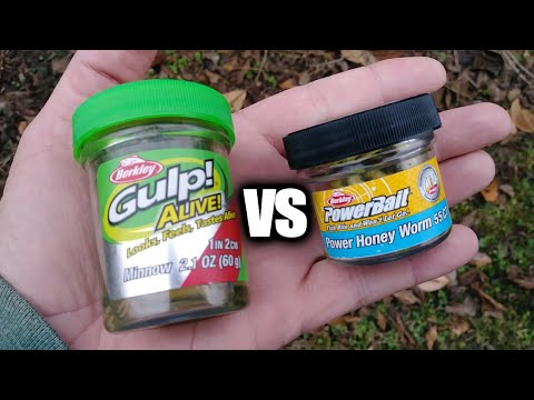 Gulp Minnow Vs PowerBait Honey Worm - Which Bait Catches More Fish?