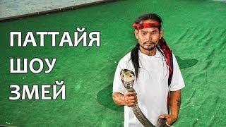 Шоу со змеями в Паттайя на змеиной ферме - THAIHI.RU