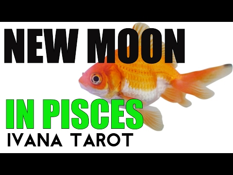 ❤️ TAKE A RUNNING START New Moon in Pisces 26 February 2017