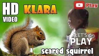 ☆ Klara action scared squirrel ~ Aksi Klara Takut Tupai ☆ #Animal
