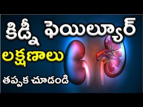 Kidney Failure Symptoms In Telugu Youtube