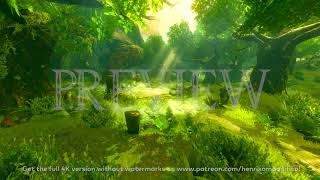 Zelda Breath of the Wild (Lost Woods #2) - 4K 60FPS Looping Background by Henriko Magnifico