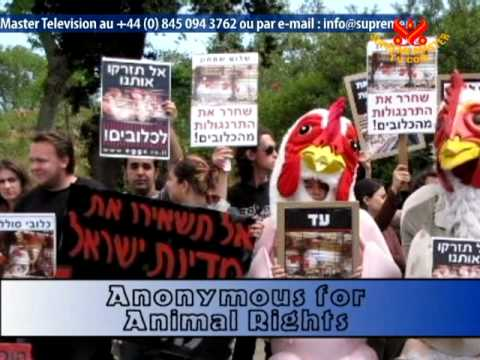 Shining World Leadership - Anonymous for Animal Rights
