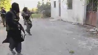 Правозащитники: повстанцы Сирии убивали население (новости)