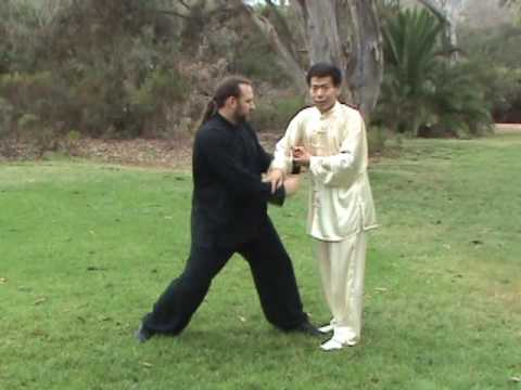 Tai Chi Taiji Self-defense Application Traditional Yang Long Form 2