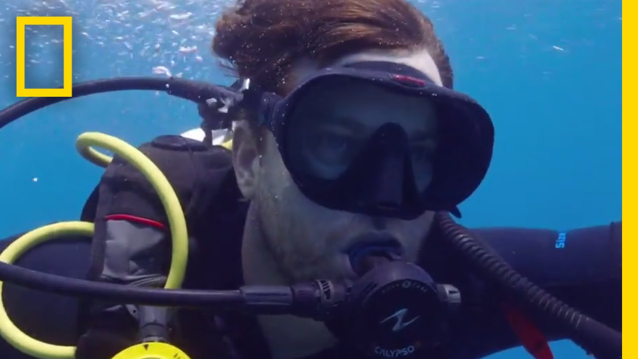 Coral Bleaching in the Great Barrier Reef | Years of Living Dangerously