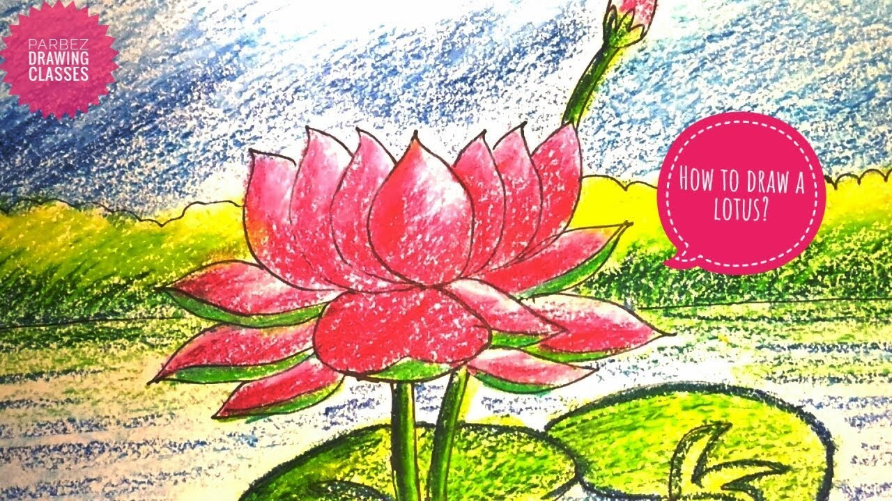 How To Draw A Lotus Flower Easily By Parbez Drawing Classes Youtube