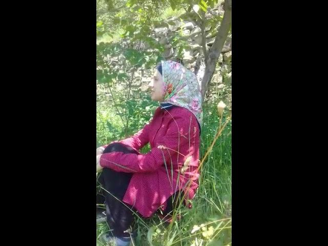 Изображение предпросмотра прочтения – МадинаШахова читает произведение «Июль - макушка лета» А.Т.Твардовского