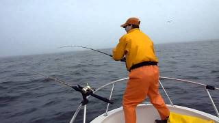 White Sea Bass Fishing - Monterey CA