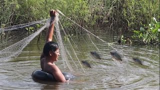 Cambodia,Catch Fish,Snak,Eels Fish Prakompers,kondal 2016122 - ការចាប់ត្រីតាម បឹង ស្រះ ដោយមង