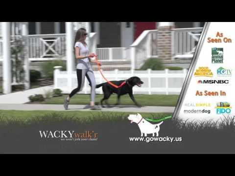 Wacky Walk'r   60 sec Vimeo HD