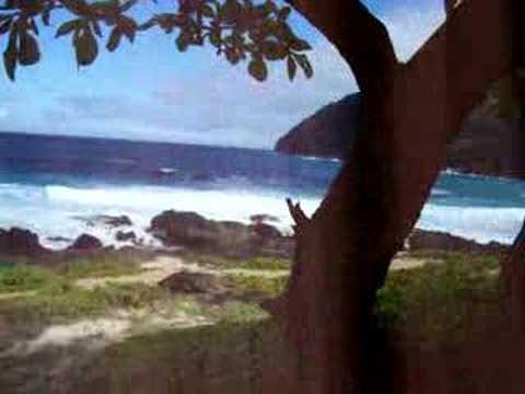 Haiwaii 2007 seashore