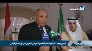 شكري: مصر تعمل دائما من أجل تعزيز الأمن القومي العربي