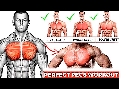 10 Best Chest Exercises You Should Be Doing!