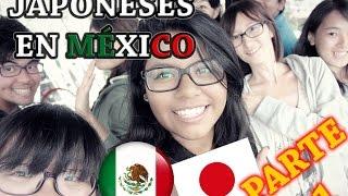 JAPONESES EN MÉXICO PT. 1   Cocinando y comiendo