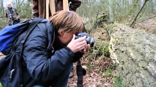 Foto Dom Melskens - Workshop Natuur & Macro Fotografie