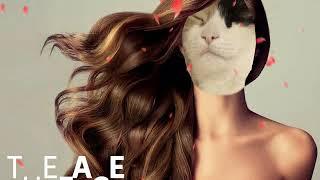 Моя кошка Тася(Талисман)/Супер звезда