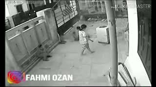 Download Video Detik Detik terjelas Tsunami Palu terekam CCTV dipemukiman Warga Palu MP3 3GP MP4
